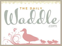 Daily Waddle