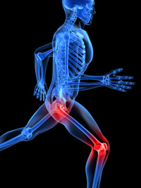 knee and hip graphic